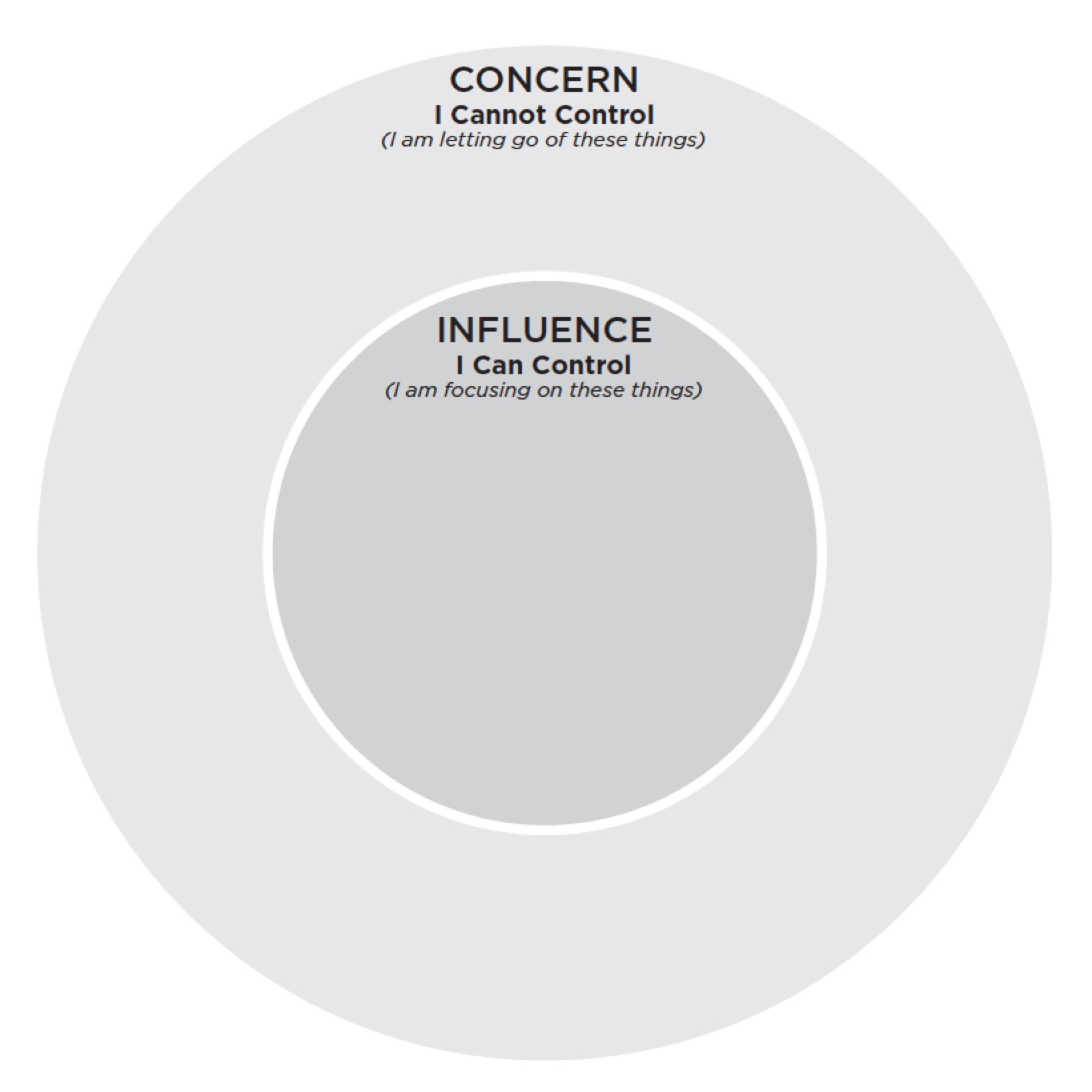 Concern vs. Influence Blank Template